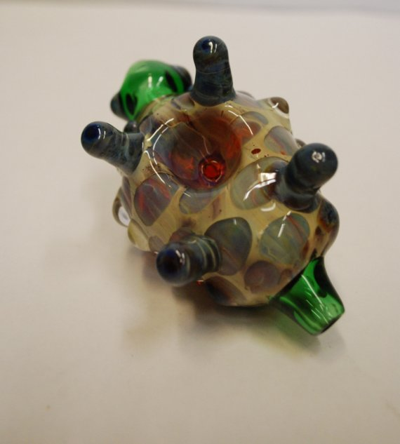 Turtle Pipe2